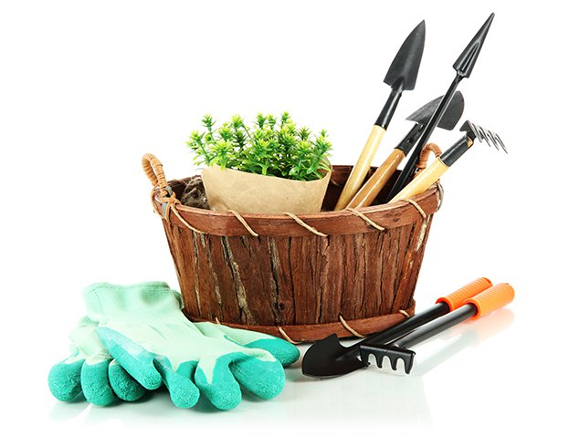 basket with gardening tools and gloves